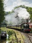 Steam train in the Churnet Valley