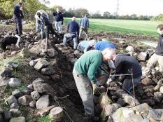 Dry stone wallers