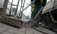 picture of a brush & shovel